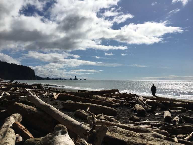 Port Townsend, Washington  and Beach Adventures